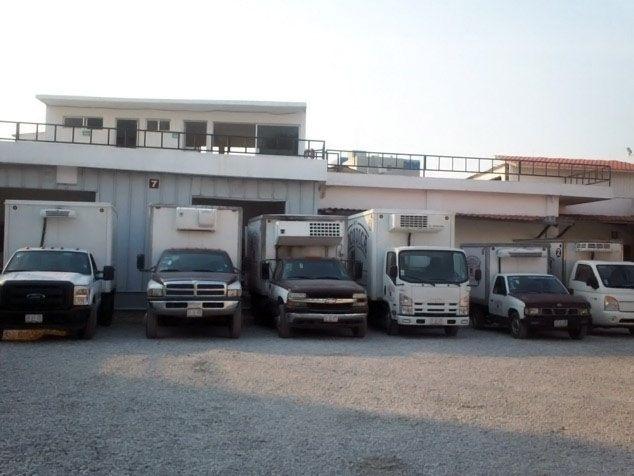 Distribución y Entrega de carne en el puerto de Ciudad del Carmen - SOCODICA