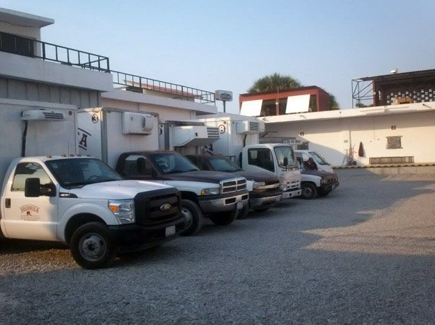 Transporte y Entrega de carne en Ciudad del Carmen - SOCODICA